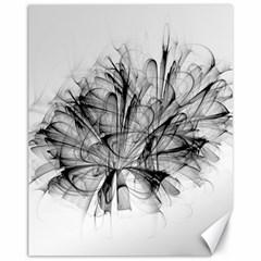 High Detailed Resembling A Flower Fractalblack Flower Canvas 11  X 14