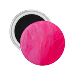 Very Pink Feather 2 25  Magnets