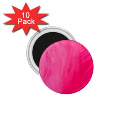 Very Pink Feather 1.75  Magnets (10 pack)