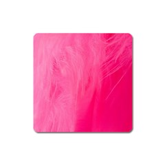 Very Pink Feather Square Magnet