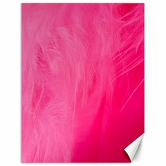 Very Pink Feather Canvas 12  X 16
