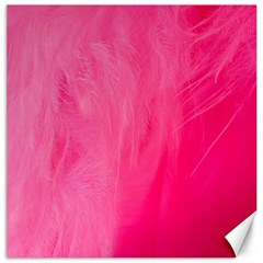 Very Pink Feather Canvas 16  x 16