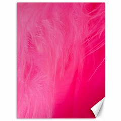 Very Pink Feather Canvas 36  X 48