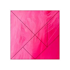 Very Pink Feather Acrylic Tangram Puzzle (4  x 4 )