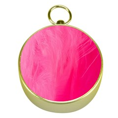 Very Pink Feather Gold Compasses