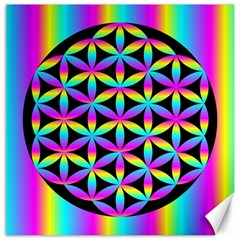 Flower Of Life Gradient Fill Black Circle Plain Canvas 20  X 20