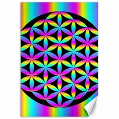 Flower Of Life Gradient Fill Black Circle Plain Canvas 20  X 30