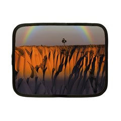 Rainbows Landscape Nature Netbook Case (small)