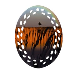 Rainbows Landscape Nature Oval Filigree Ornament (Two Sides)