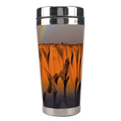 Rainbows Landscape Nature Stainless Steel Travel Tumblers