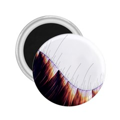 Abstract Lines 2 25  Magnets