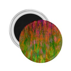 Abstract Trippy Bright Melting 2 25  Magnets