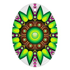 Design Elements Star Flower Floral Circle Ornament (oval)