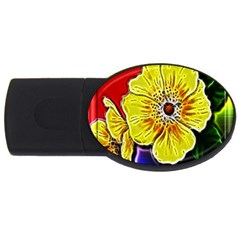 Beautiful Fractal Flower In 3d Glass Frame Usb Flash Drive Oval (4 Gb)