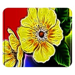 Beautiful Fractal Flower In 3d Glass Frame Double Sided Flano Blanket (Small)
