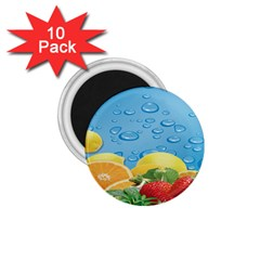 Fruit Water Bubble Lime Blue 1 75  Magnets (10 Pack)