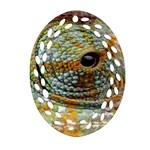 Macro Of The Eye Of A Chameleon Oval Filigree Ornament (Two Sides) Back