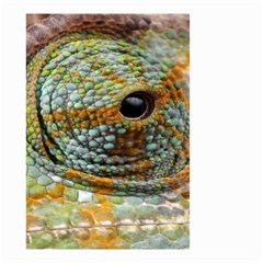 Macro Of The Eye Of A Chameleon Small Garden Flag (Two Sides)