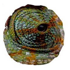Macro Of The Eye Of A Chameleon Large 18  Premium Round Cushions