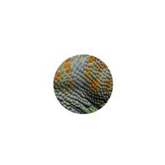 Macro Of Chameleon Skin Texture Background 1  Mini Magnets