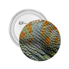 Macro Of Chameleon Skin Texture Background 2 25  Buttons