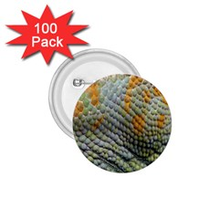 Macro Of Chameleon Skin Texture Background 1.75  Buttons (100 pack)