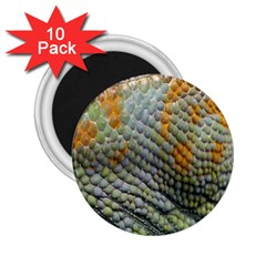 Macro Of Chameleon Skin Texture Background 2 25  Magnets (10 Pack)