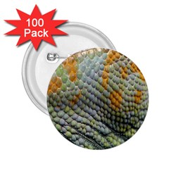 Macro Of Chameleon Skin Texture Background 2 25  Buttons (100 Pack)