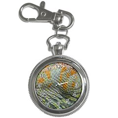 Macro Of Chameleon Skin Texture Background Key Chain Watches