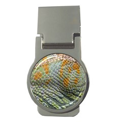 Macro Of Chameleon Skin Texture Background Money Clips (Round)