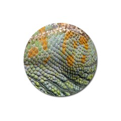 Macro Of Chameleon Skin Texture Background Magnet 3  (Round)