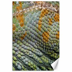 Macro Of Chameleon Skin Texture Background Canvas 20  X 30
