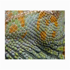 Macro Of Chameleon Skin Texture Background Small Glasses Cloth (2-Side)