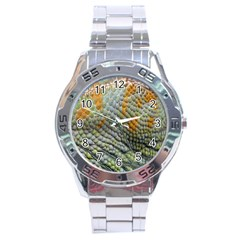 Macro Of Chameleon Skin Texture Background Stainless Steel Analogue Watch