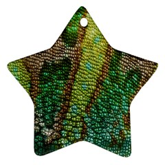 Colorful Chameleon Skin Texture Star Ornament (two Sides)