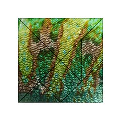 Colorful Chameleon Skin Texture Acrylic Tangram Puzzle (4  x 4 )