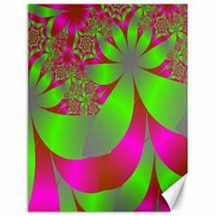 Green And Pink Fractal Canvas 18  X 24