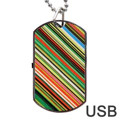 Colorful Stripe Background Dog Tag USB Flash (Two Sides)