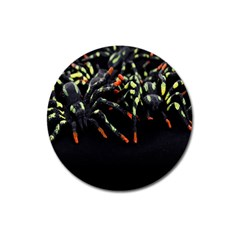 Colorful Spiders For Your Dark Halloween Projects Magnet 3  (round)
