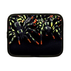 Colorful Spiders For Your Dark Halloween Projects Netbook Case (small)