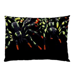 Colorful Spiders For Your Dark Halloween Projects Pillow Case