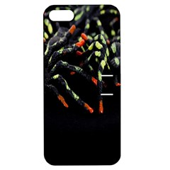 Colorful Spiders For Your Dark Halloween Projects Apple iPhone 5 Hardshell Case with Stand