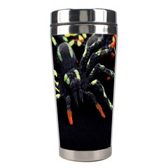 Colorful Spiders For Your Dark Halloween Projects Stainless Steel Travel Tumblers