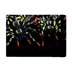 Colorful Spiders For Your Dark Halloween Projects iPad Mini 2 Flip Cases