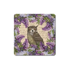 Vintage owl and lilac Square Magnet