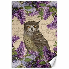 Vintage owl and lilac Canvas 12  x 18