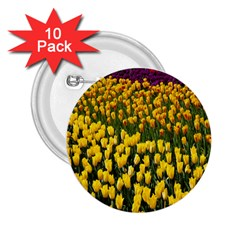 Colorful Tulips In Keukenhof Gardens Wallpaper 2 25  Buttons (10 Pack)