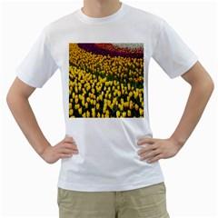 Colorful Tulips In Keukenhof Gardens Wallpaper Men s T Shirt (white) (two Sided)