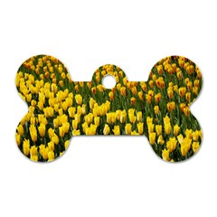 Colorful Tulips In Keukenhof Gardens Wallpaper Dog Tag Bone (one Side)