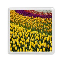 Colorful Tulips In Keukenhof Gardens Wallpaper Memory Card Reader (square)